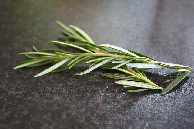 The History, Benefits, and Side Effects of Rosemary
