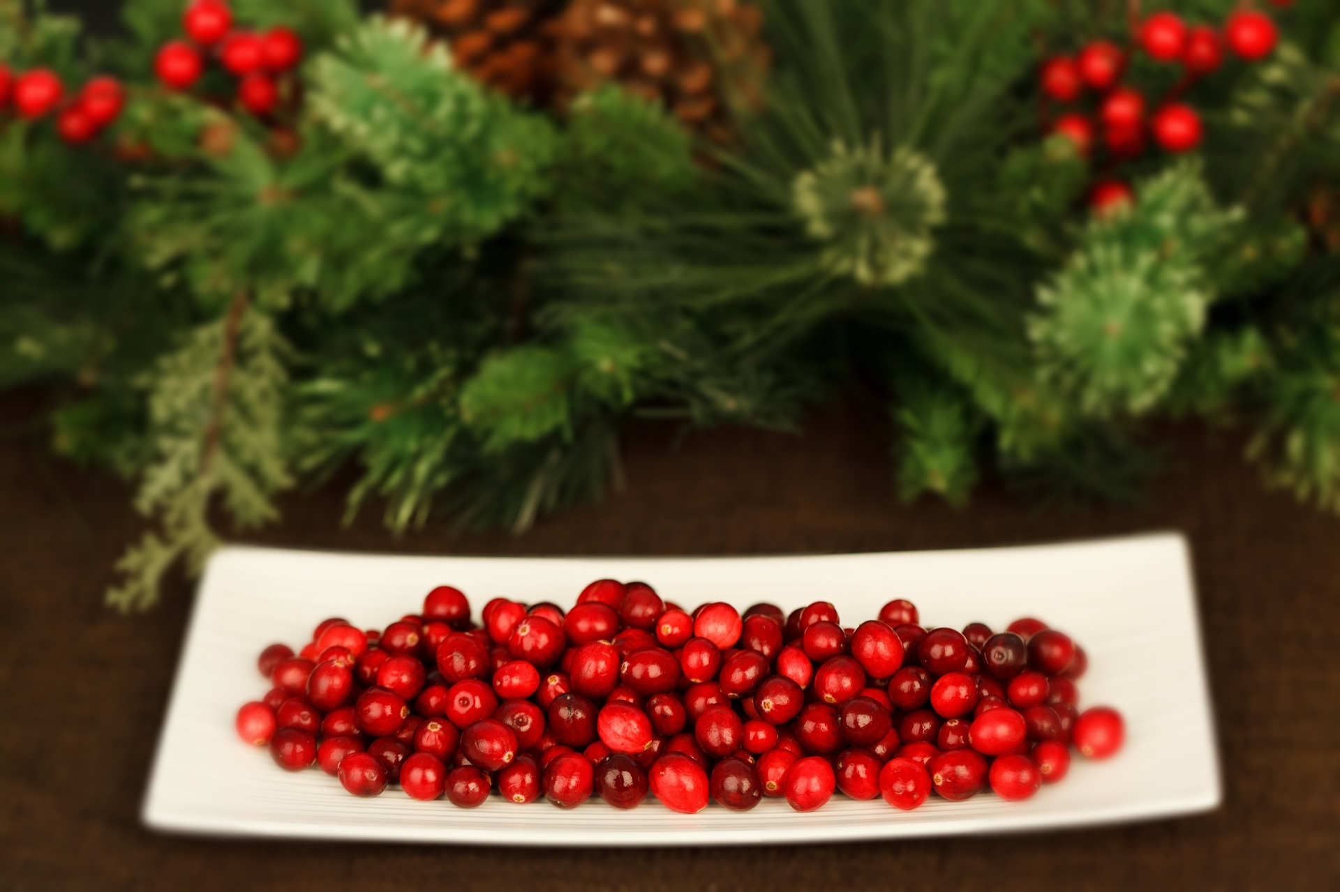 Cranberries: Fall in Love with This Powerful Red Fruit