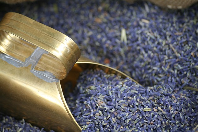 Lavender: First Aid in a Bottle